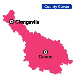 Flower Delivery Cavan