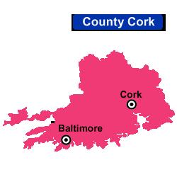 Flower Delivery Cork