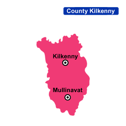 Flower Delivery Kilkenny Areas